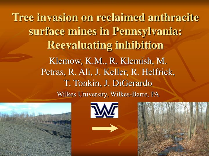 tree invasion on reclaimed anthracite surface mines in pennsylvania reevaluating inhibition n.
