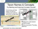 taxon names concepts11
