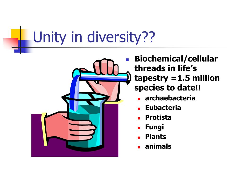 Unity in diversity??