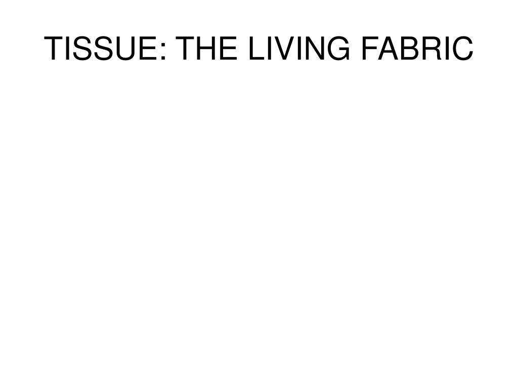 TISSUE: THE LIVING FABRIC