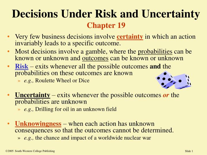 decisions under risk and uncertainty chapter 19 n.