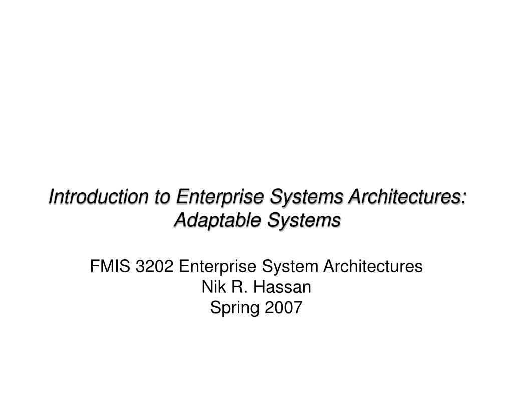 fmis 3202 enterprise system architectures nik r hassan spring 2007 l.