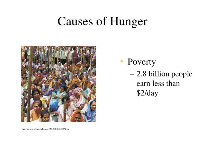 the different causes of hunger in the world Free world poverty papers what are the causes of the world hunger there are many different reasons this essay will look at the causes of world hunger as.