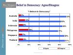 belief in democracy agree disagree