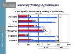 democracy working agree disagree