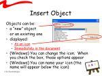 insert object