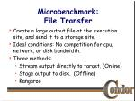 microbenchmark file transfer