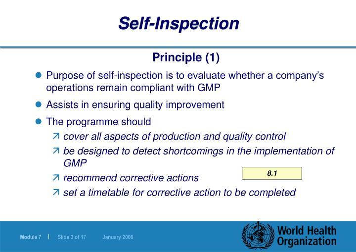 Self inspection1