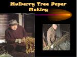 mulberry tree paper making