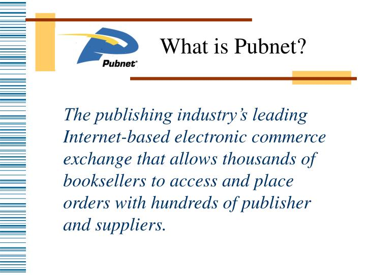 What is pubnet