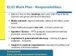 elic work plan responsibilities