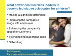 what convinces business leaders to become legislative advocates for children
