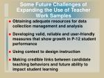some future challenges of expanding the use of teacher work samples26