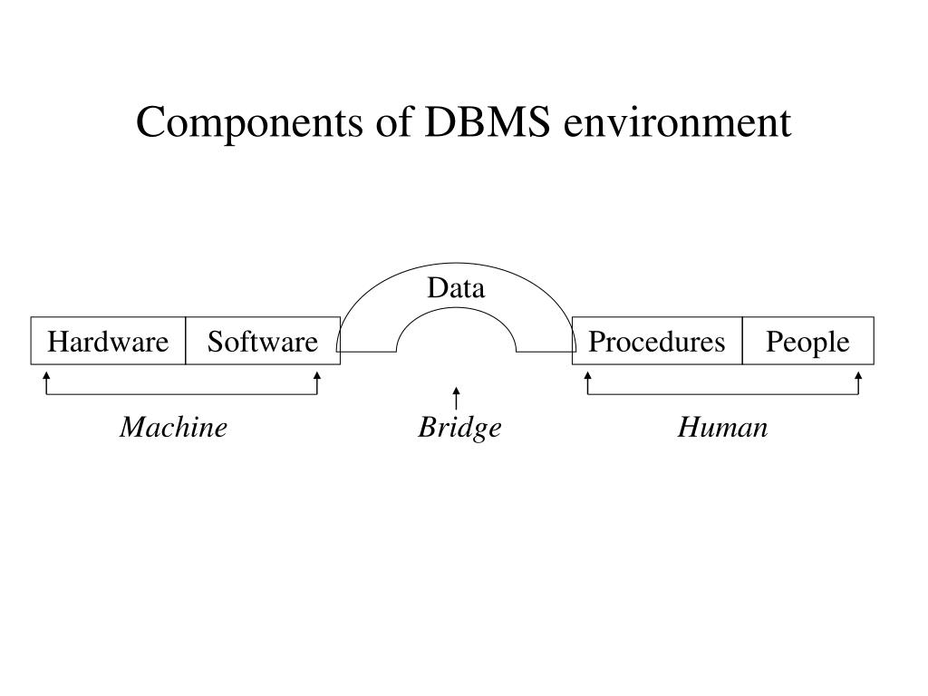 Components of DBMS environment