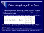 determining image flow fields26