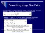 determining image flow fields27