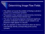 determining image flow fields28