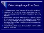 determining image flow fields29