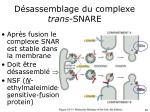 d sassemblage du complexe trans snare