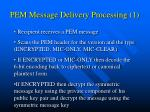 pem message delivery processing 1