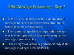 pem message processing step 2