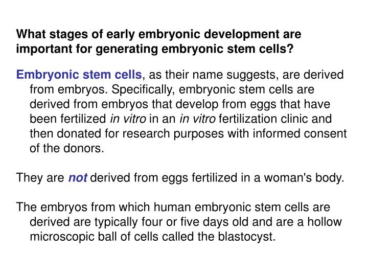 What stages of early embryonic development are