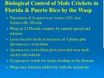 biological control of mole crickets in florida puerto rico by the wasp