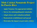 mole cricket nematode project in puerto rico