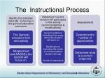 the instructional process