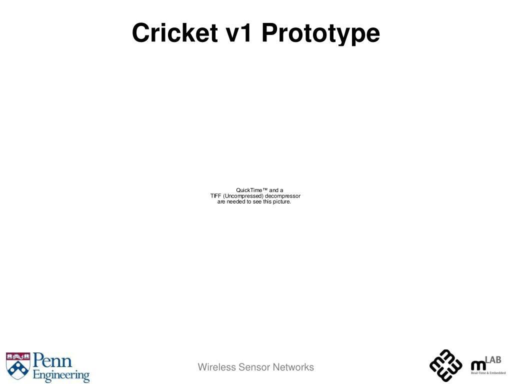 Cricket v1 Prototype