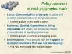 policy concerns at each geographic scale
