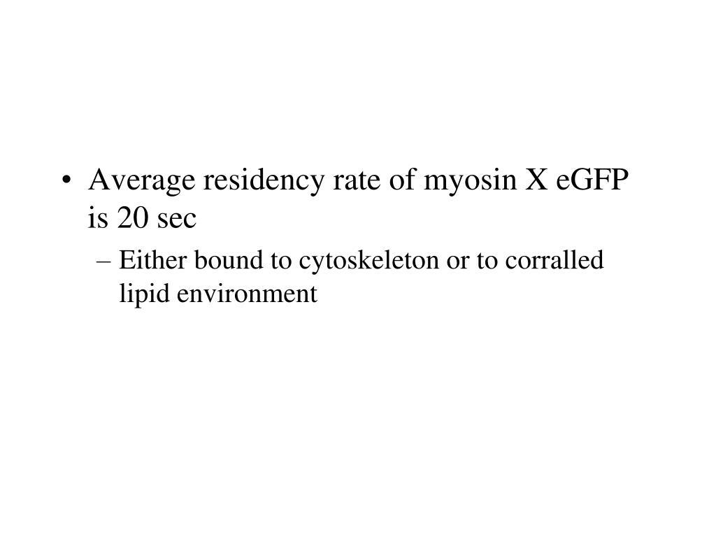 Average residency rate of myosin X eGFP is 20 sec