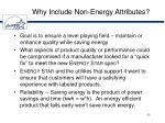 why include non energy attributes