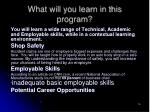 what will you learn in this program