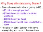 why does whistleblowing matter