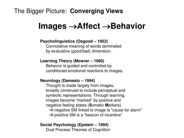 The Bigger Picture:
