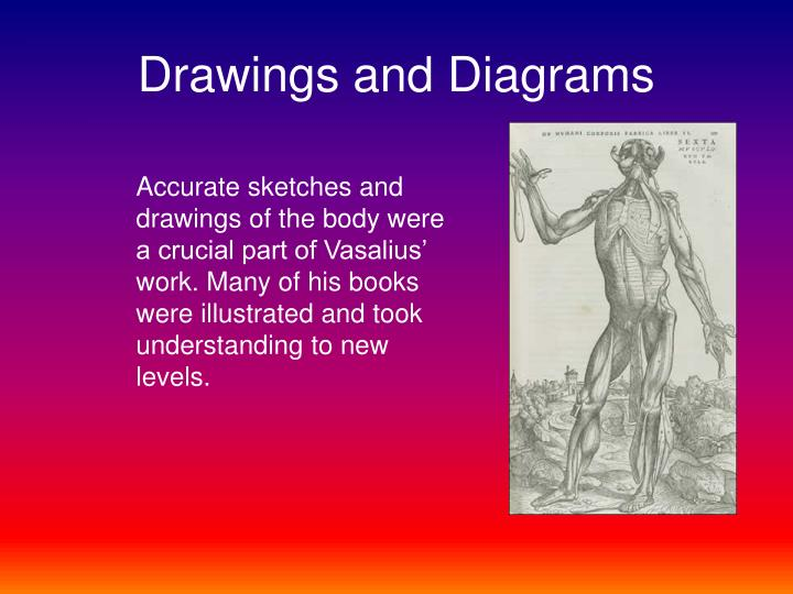 Drawings and Diagrams