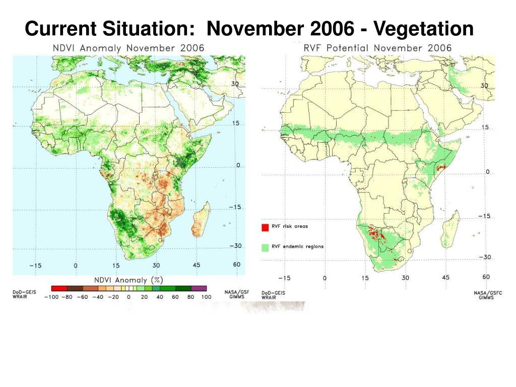 Current Situation:  November 2006 - Vegetation