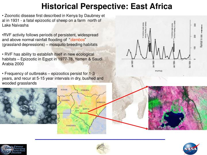 Historical perspective east africa