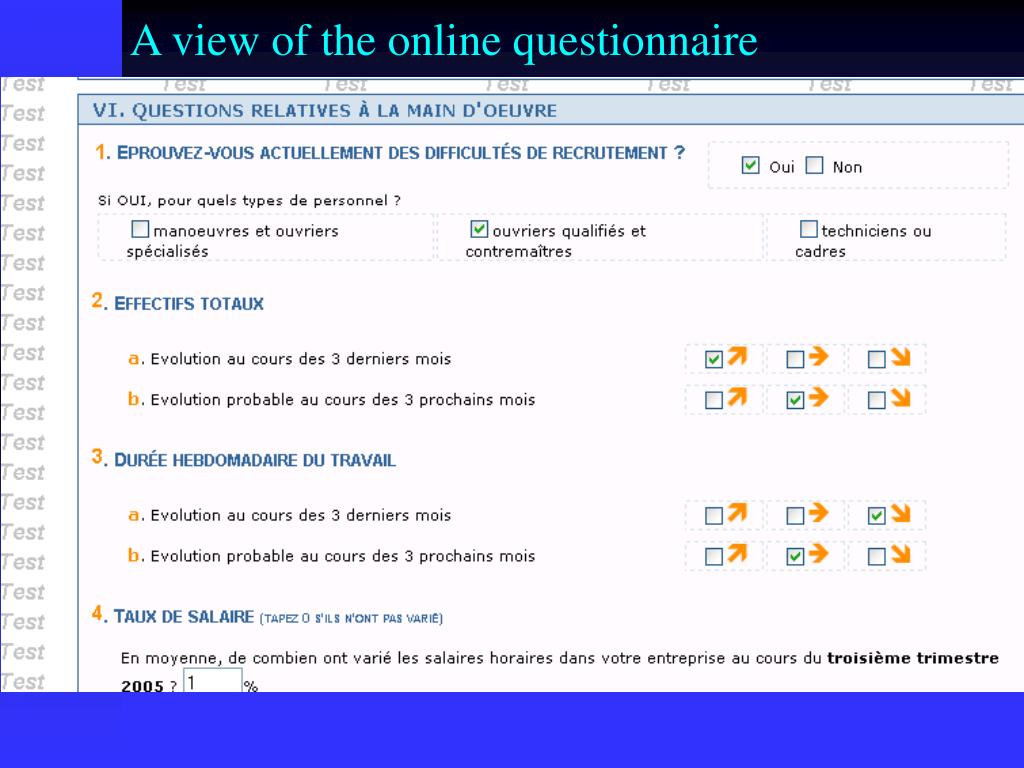 A view of the online questionnaire
