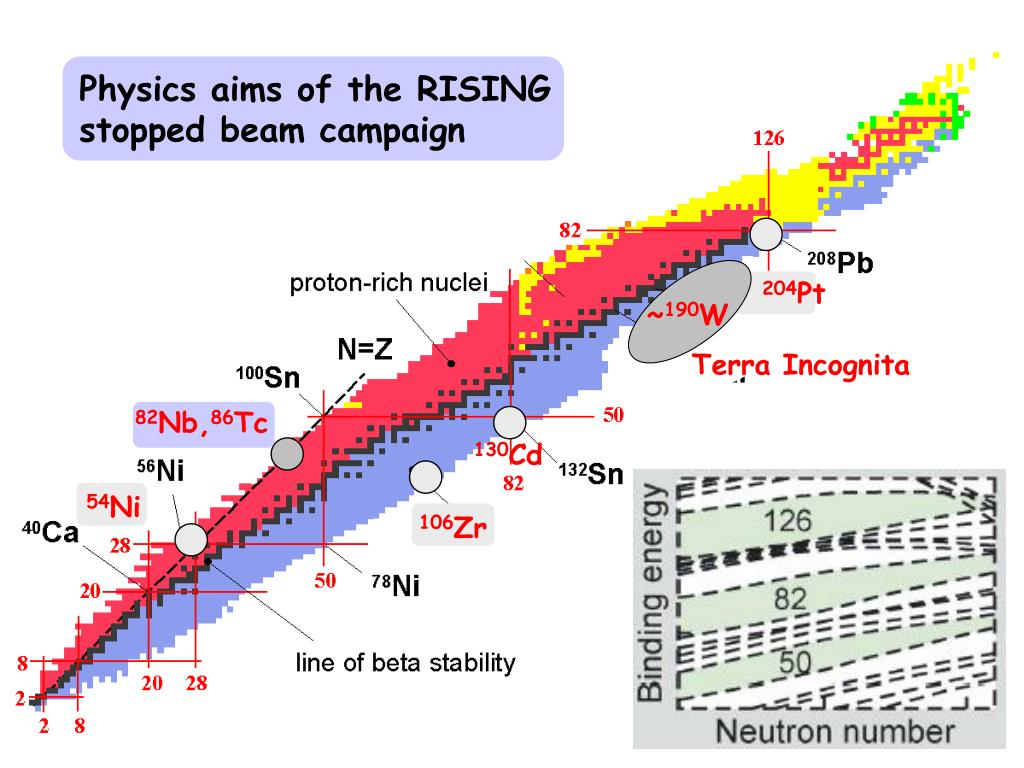 Physics aims of the RISING