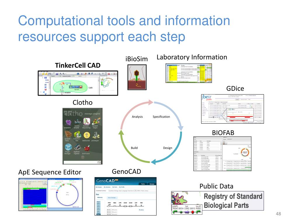 Computational tools and information resources support each step