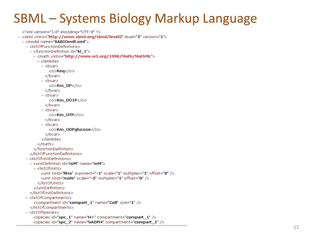 SBML – Systems Biology Markup Language
