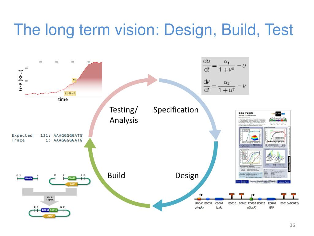 The long term vision: Design, Build, Test
