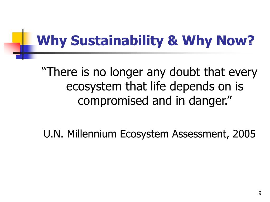 Why Sustainability & Why Now?