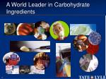 a world leader in carbohydrate ingredients