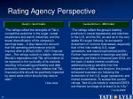 rating agency perspective