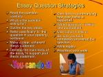 essay question strategies