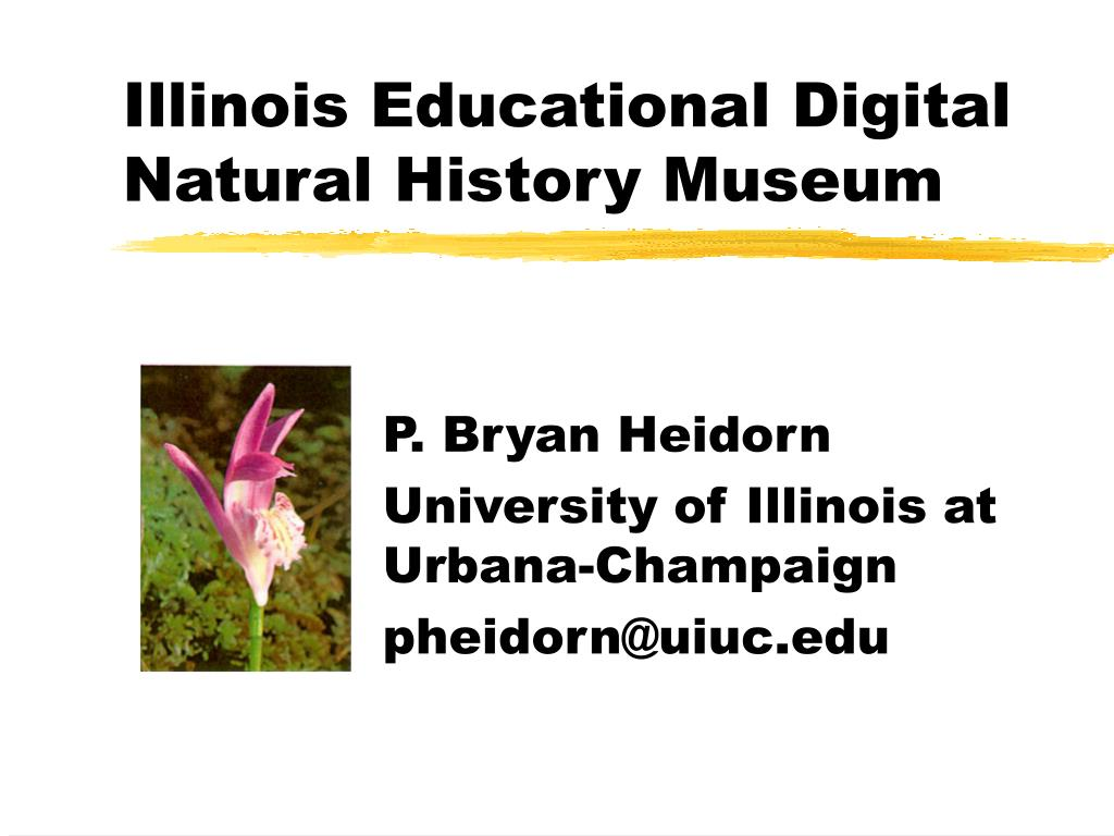 illinois educational digital natural history museum l.