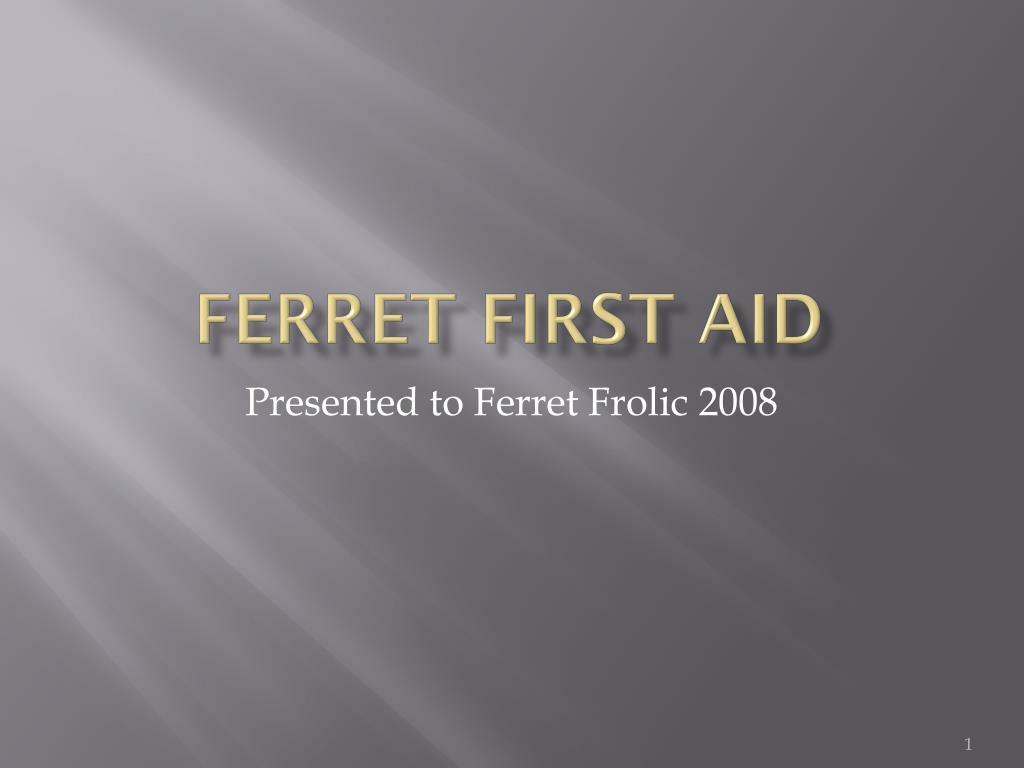 ferret first aid l.